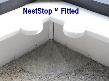 Neststop Fitted
